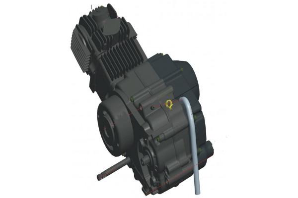 Motor 90cc XMOTOS Automat